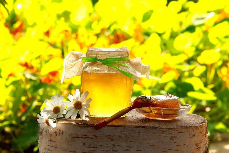 натюрморт, фотонатюрморт, лето, мёд, ромашки, наталья казанцева Лето в баночкеphoto preview
