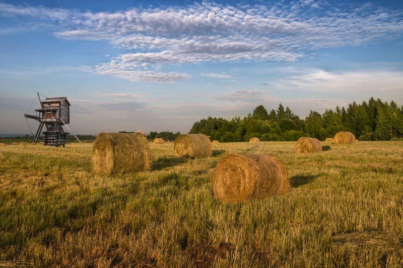огодская обл., семёнково, деревянное зодчество Сенокосная пораphoto preview