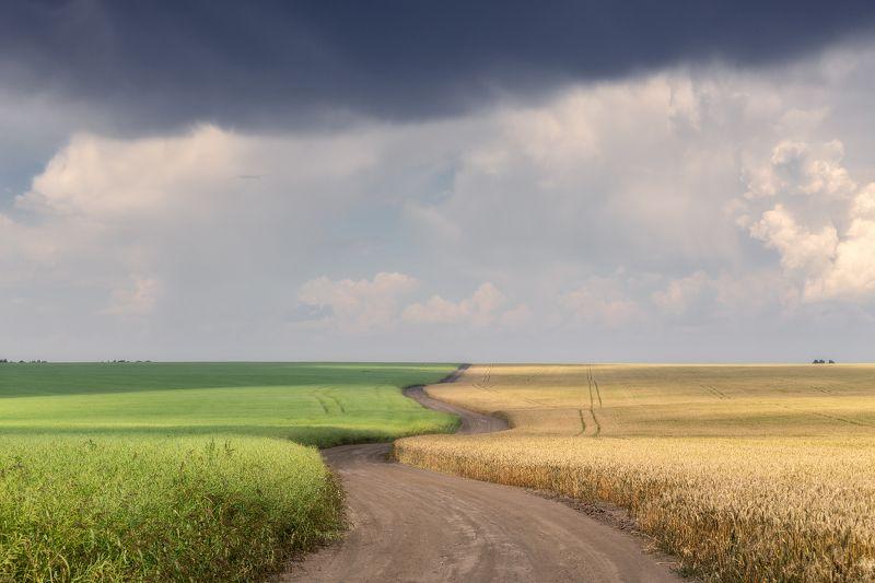 природа, поля, дороги, Тульская область, перед грозой, пейзаж Тульские просторы. Перед грозой.photo preview
