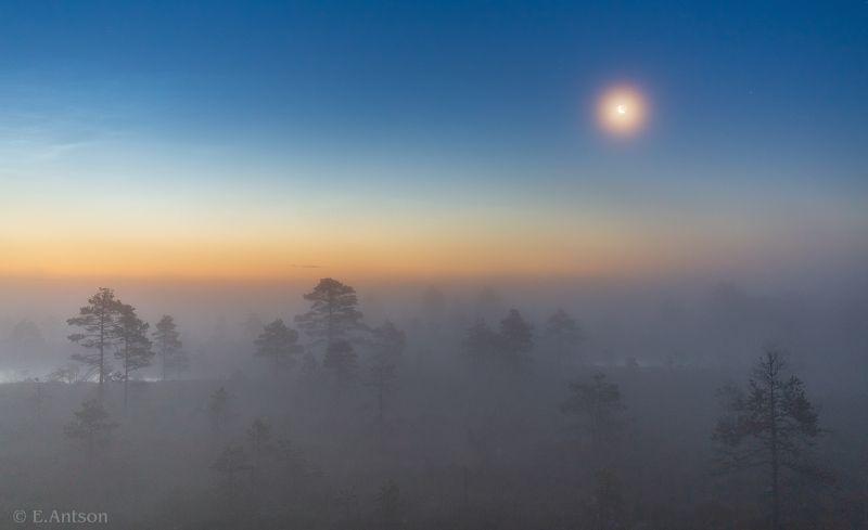 пейзаж, природа, ночь, болото, эстония В туманной тишине фото превью