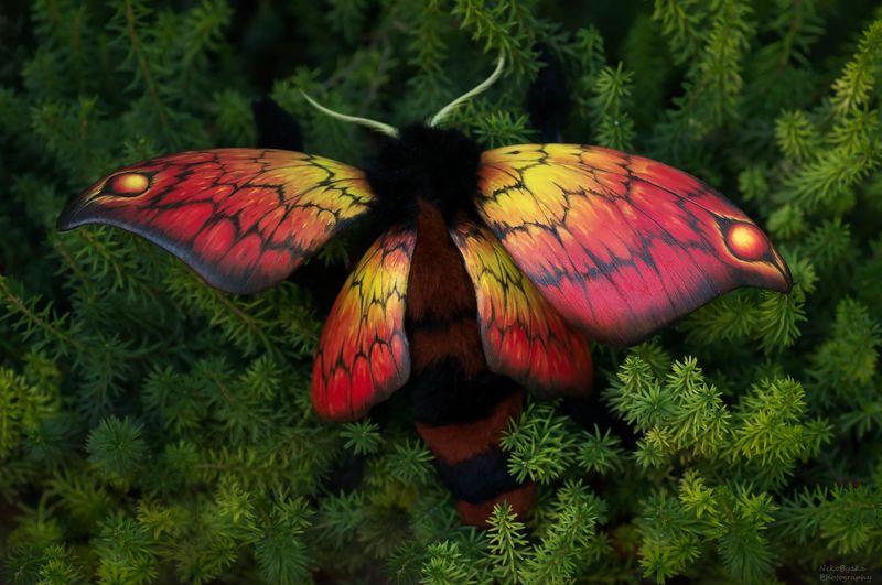 природа, фэнтези, игрушка, моль, бабочка, ручная работа, nature, fantasy, toy, moth, butterfly, handmade, Огненная мольphoto preview