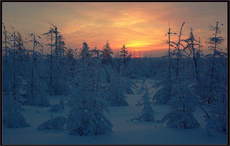 Зимний вечер в Приполярьеphoto preview