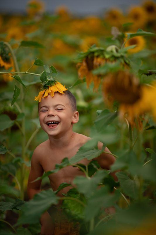 поле с подсолнухами счастьеphoto preview