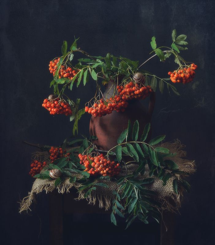 натюрморт,рябина,ягоды,август,ракушки рябиновый... фото превью