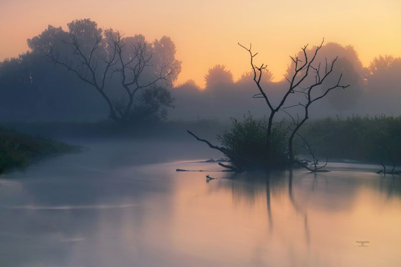 water, landscape, river, fog, reflection, Poland, Kociewie, branch, trees, Glows in the water. photo preview