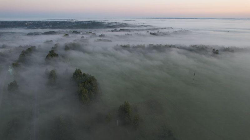 Туманное утро, вблизи от Томскаphoto preview