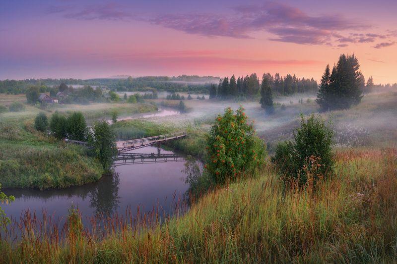 туман, река, утро, лето Ранее утро в Лемеphoto preview