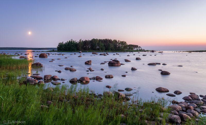 пейзаж, природа, эстония Белые ночи июня фото превью