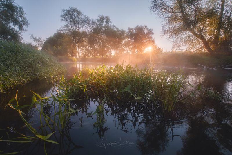угра,утро,пейзаж,рассвет,лето,туман,солнце,лучи Утро августаphoto preview