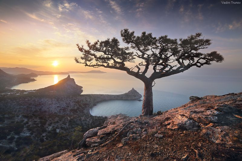 крым, новый свет Новый Светphoto preview