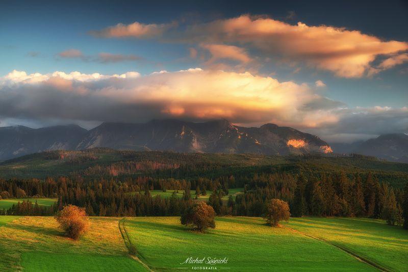 #tree #mountains #summer #sunset #wood #nature #amazing #earth #pics #photo #best #poland Łapszanka.photo preview
