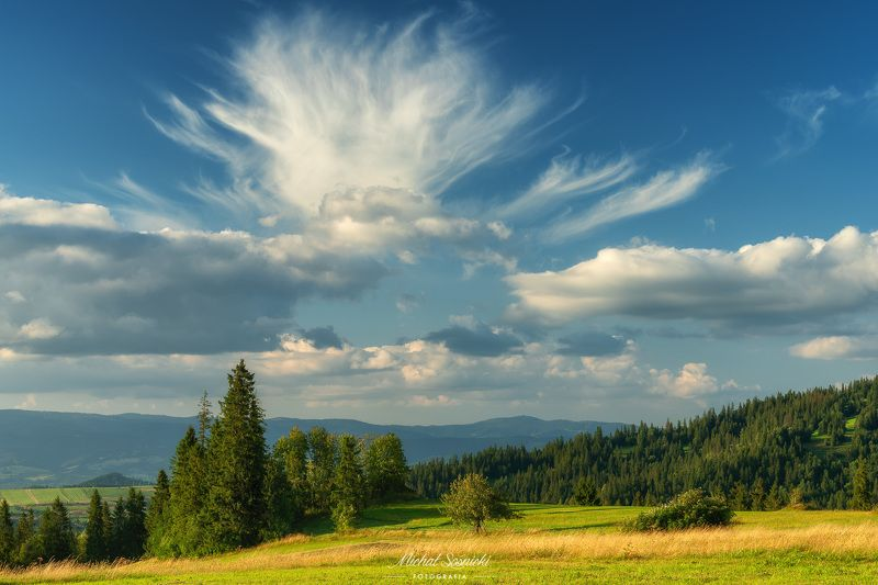 #tree #mountains #summer #sunset #wood #nature #amazing #earth #pics #photo #best #poland Amazing clouds...photo preview
