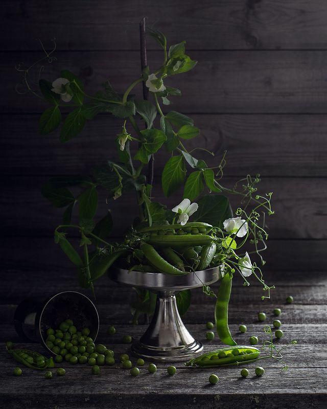 натюрморт фотонатюрморт горох горошек букет Натюрморт с горохомphoto preview