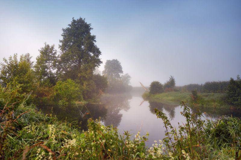 август, беларусь, лето, рассвет, река, рыбалка, туман, уса, утро Летом на Усеphoto preview