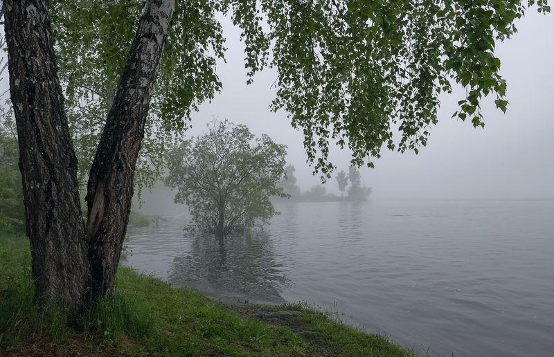 наводнение, туман, раннее утро. Большая вода.photo preview