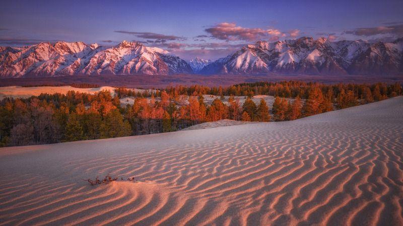 чарская пустыня,кодар,горы,забайкалье утро Кодараphoto preview
