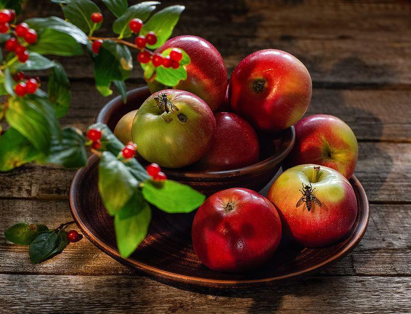 натюрморт фотонатюрморт яблоки лето  Яблочный спасphoto preview