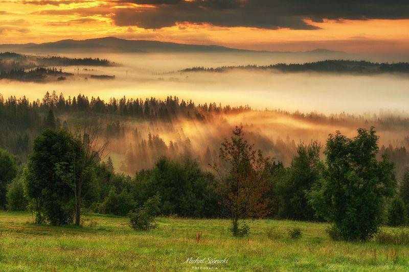 #poland #pentax #benro #lightroom #nikcollection #nature #sunrise #mountains #sky #fog #foggy #morning #pix Nature...photo preview
