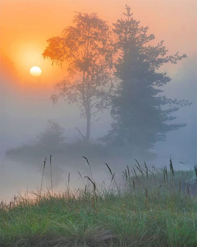 утро, туман, остров, рассвет Дыхание осениphoto preview