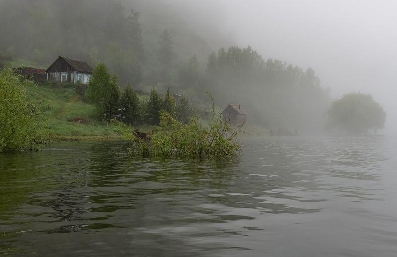 Утро, туман, кордон.  Утро на кордоне.photo preview