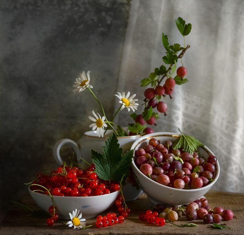 фотография, натюрморт, ягоды, август, сад В моём саду...photo preview