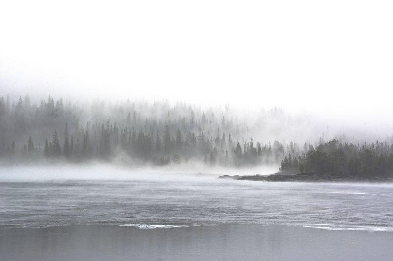 Landscapes, nature, fog, mist, Norway, water, lake, mood,  Нарисовано туманомphoto preview