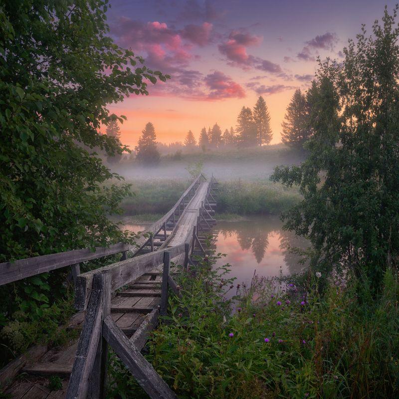 туман, мост, лето Моменты рассветаphoto preview