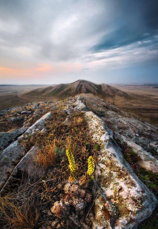 урал, южный урал, горы, долгие горы, пейзаж, рассвет, россия Андреевские шишкиphoto preview