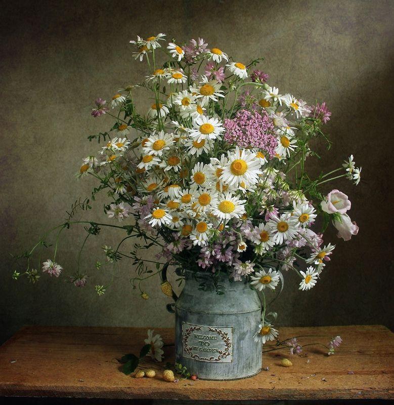 лето,  цветы, натюрморт, марина филатова, ромашки ***photo preview