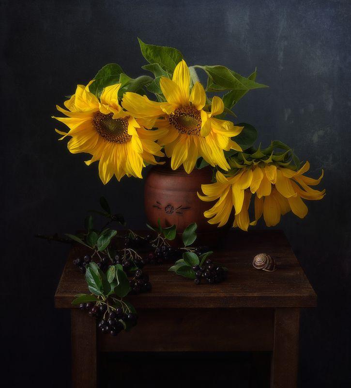 натюрморт,композиция,рябина,ягоды,подсолнухи,арония подсолнухи... фото превью