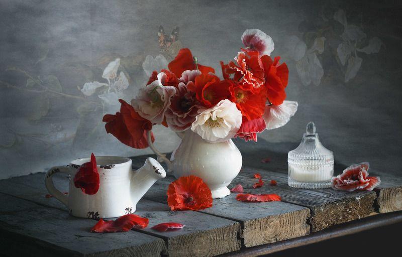 натюрморт, букет цветов, маки, С макамиphoto preview