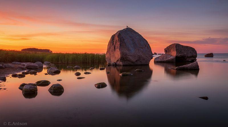 пейзаж, природа, море, эстония Спящие гиганты в белой ночи фото превью