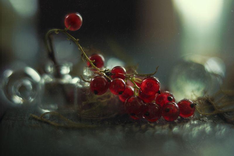 Красной смородины гроздья душистые фото превью