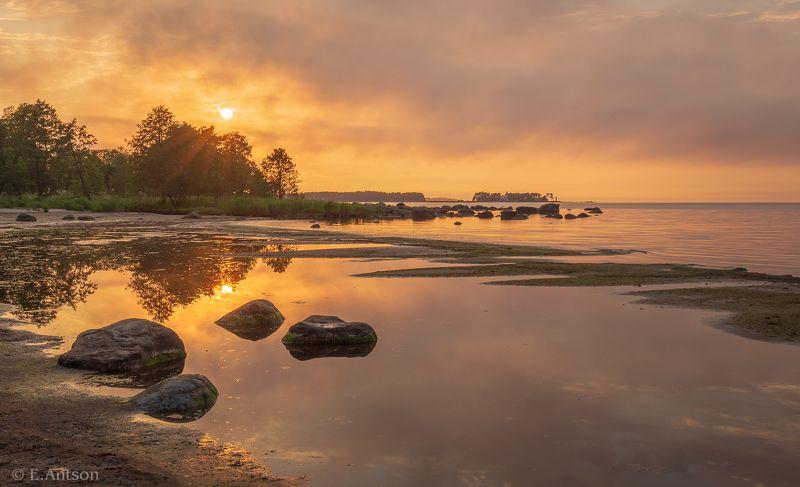 пейзаж, природа, море, эстония На закате фото превью