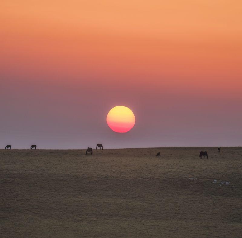 карачаево-черкесия, северный кавказ, бермамыт, рассвет, август Рассвет на плато Бермамыт.photo preview