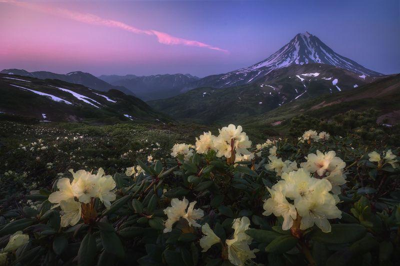 камчатка, вулканы,  вилючинский Вечер на перевалеphoto preview