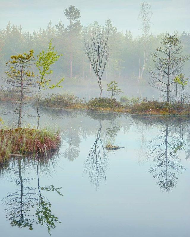 утро, туман, остров, рассвет Утренний спектакльphoto preview