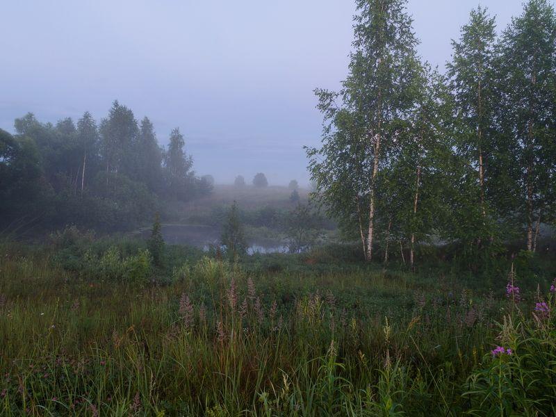 туман, ночь, река, пейзаж, природа Погружениеphoto preview