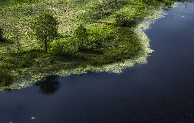 лето,минимализм,брянскаяобласть,день А на том берегу..photo preview