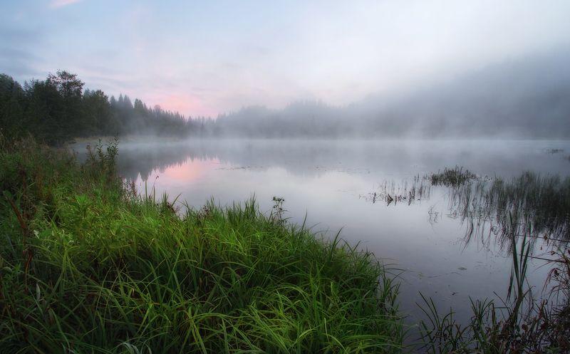 природа удмуртии, туман, утро, пруд Вот и лето прошло, словно и не бывало ...photo preview