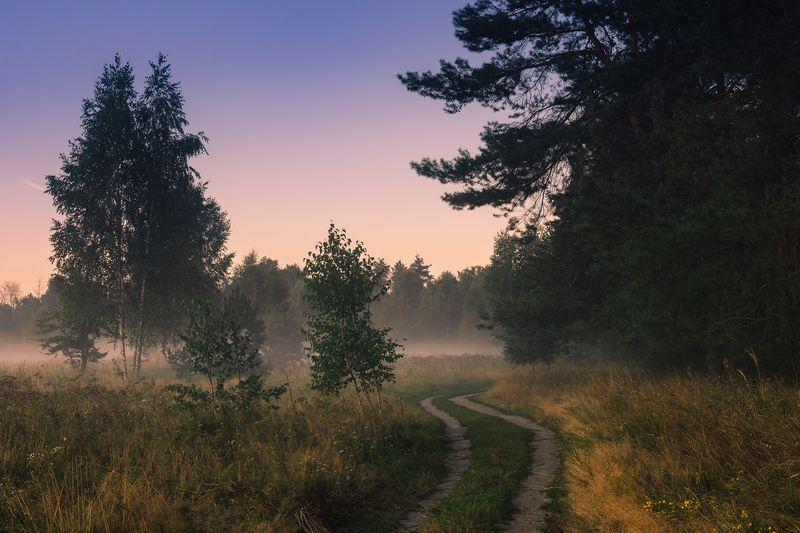 луг, лето, август, рассвет, туман Зябкие ночи, скупые рассветыphoto preview
