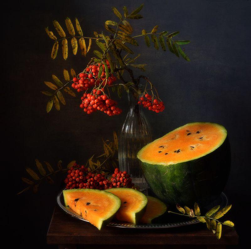 натюрморт,композиция,арбуз,рябина с оранжевым арбузом... фото превью