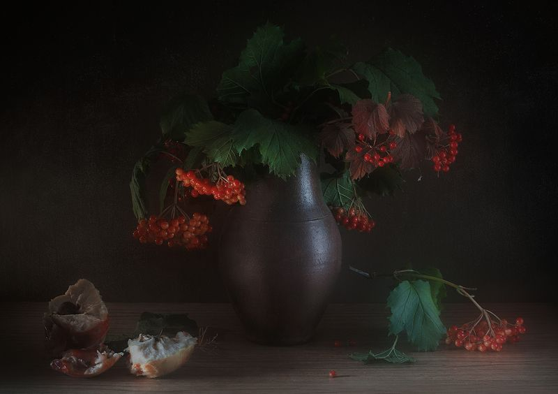 калина яблоко фрукт натюрморт Красивое и не красивоеphoto preview
