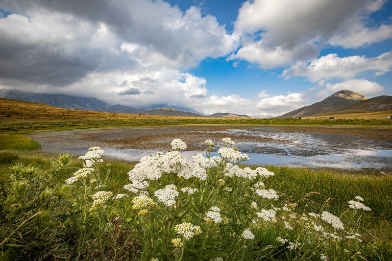 lake, flowers, sky, green, clouds, landscape, italy Landascapesphoto preview