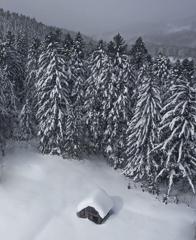 Зима Тишинаphoto preview