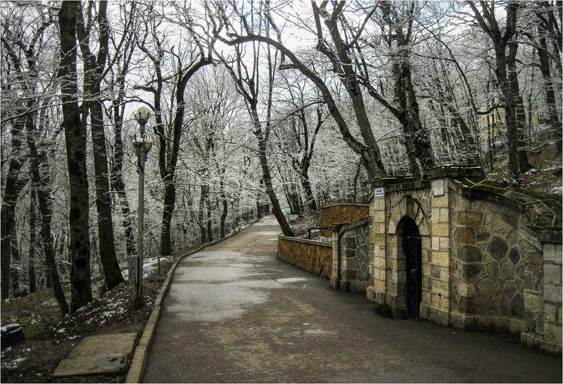 железноводск Весенние кружеваphoto preview