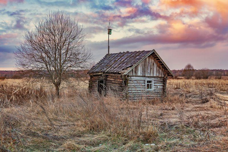 тверская область, весна, деревня Тверская областьphoto preview