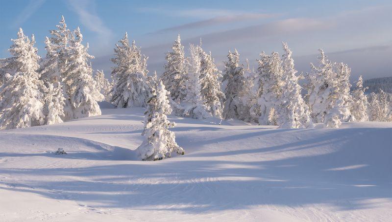 ...Солнечно - снежное настроение...photo preview