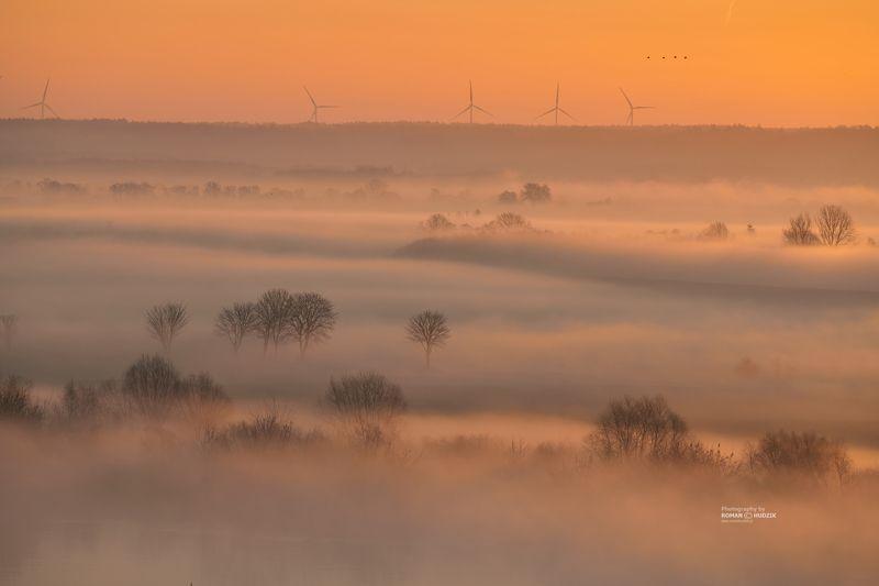 Morning mists, fog, sunrise, river, landscape Morning mists.photo preview