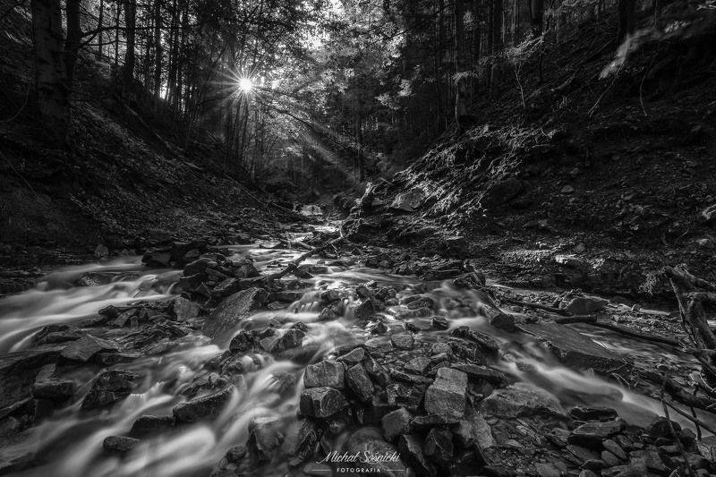 #poland #waterfall #river #rock #forest #water #long #best #nature ...photo preview